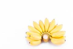 Neue Hand von goldenen Bananen auf weißer Hintergrund dem gesunden Fruchtlebensmittel Pisang Mas Banana lokalisiert Stockbild