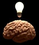 Neue Idee. Glühlampekonzept des Gehirns. Stockfotos