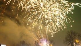 Neue Jahre Feuerwerke Lizenzfreies Stockbild