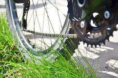 Neue Kette und neues Getriebe auf einem alten grauen Fahrrad, das auf dem Gras steht, Ansicht von unten des Hinterrads stockfotografie
