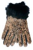 Neue lederne Handschuhe des Frauenleoparden Stockfotografie