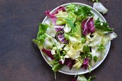 Neue Mischung von Salaten Beschneidungspfad eingeschlossen lizenzfreies stockfoto