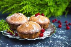 Neue Muffins und Moosbeerfruchtgetränk mit einem dunklen Hintergrund und dem Niederlassungsbaum Stockbild