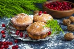 Neue Muffins und Moosbeerfruchtgetränk mit einem dunklen Hintergrund und dem Niederlassungsbaum Lizenzfreies Stockbild