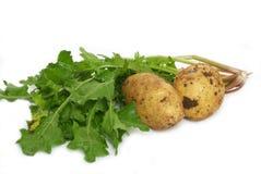 Neue patatoes u. grünes Gemüse stockbilder