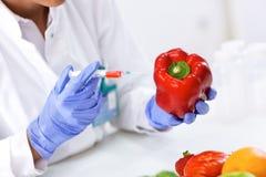Neue Probe der zum Gemüse setzende und cheking Wissenschaftler resultiert stockfoto