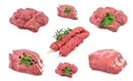 Neue Sammlung des rohen Fleisches Lizenzfreie Stockfotografie