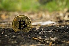 Neue Schlüsselwährungs-, bitcoin- und Computergebühr finanzieren Karte Lizenzfreie Stockfotografie