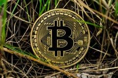 Neue Schlüsselwährungs-, bitcoin- und Computergebühr finanzieren Karte Stockfoto