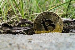 Neue Schlüsselwährungs-, bitcoin- und Computergebühr finanzieren Karte Lizenzfreie Stockfotos