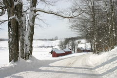 Neue Schneefälle entlang den Straßen von Vermont Lizenzfreie Stockfotografie