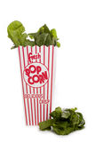 Neue Spinatsflecken aus Popcornbehälter heraus stockfoto