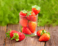 Neue stawberries Lizenzfreie Stockfotos
