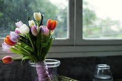 Neue Tulpen-Blumen-Anordnung dekorativ stockfotos