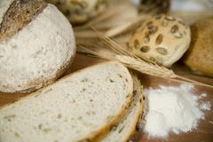 Neue verschiedene Arten des Brotes mit saurem und Weizenkopf Stockfoto