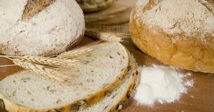 Neue verschiedene Arten des Brotes mit saurem und Weizenkopf Stockfotografie