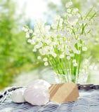 Neue weiße Maiglöckchenlüge auf einem Abtropfbrett Stockbilder