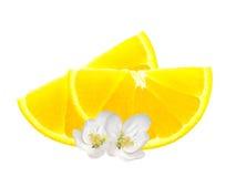 Neue Zitronenscheiben und weiße Blumen lokalisiert auf Weiß Stockfotos
