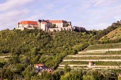 Neuenburg mit Weinberg, Deutschland lizenzfreies stockbild