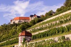 Neuenburg mit Weinberg, Deutschland lizenzfreies stockfoto