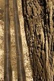 Neuer Abzugsgraben der Rohrleitung Lizenzfreie Stockbilder