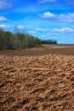 Neuer Ackerbau gepflogenes Feld Stockfotos