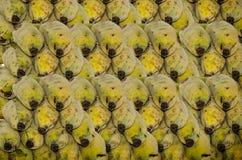 Neuer Bananenhintergrund Lizenzfreie Stockfotos