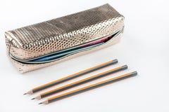 Neuer Bleistiftkasten mit den hölzernen Bleistiften lokalisiert über weißem backgro Lizenzfreie Stockfotografie