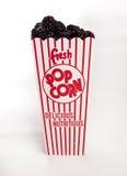 Neuer Brombeerfleck aus Popcornbehälter heraus Stockbilder