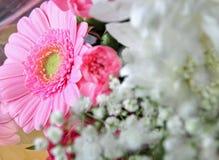 Neuer Frühling blüht Blumenstrauß Stockbilder