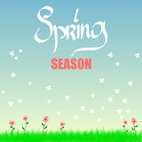 Neuer Frühlingshintergrund mit Gras, Löwenzahn und Gänseblümchen Stockbild