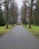 Neuer Friedhof Greifswald - Alley Royalty Free Stock Photos