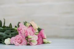 Neuer rosa Blumenrahmen auf hölzernem Hintergrund Stockbilder