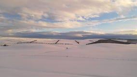 Neuer weißer Winter-Schnee-Staat Oregons-Ackerland stock video
