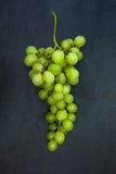 Neues Bündel grüne Trauben lokalisiert auf dunkelgrauem Schieferstein Lizenzfreies Stockbild