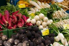 Neues biologisches veg Stockfotos