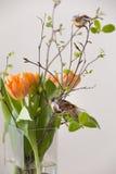 Neues Frühlingsbündel orange Tulpen und Grünblätter und kleine Vögel im netten cristal Glasvase Stilvoller Hauptdekor für Stockfotos