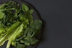 Neues Grün auf einer Platte des Schiefers auf einem schwarzen Hintergrund Stockfotografie