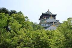 Neues Grün und Osaka Castl Stockbilder