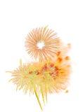 neues Jahr 2017 der Feuerwerke - schönes buntes Feuerwerk lokalisiert Lizenzfreie Stockfotografie