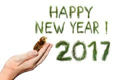 Neues Jahr getragen Stockbild
