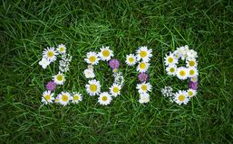 Neues Jahr 2019 machte von den Gartenblumen auf dem Gras Stockfoto