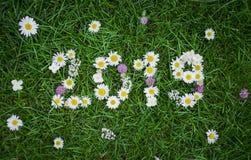 Neues Jahr 2019 machte von den Gartenblumen auf dem Gras Stockbilder