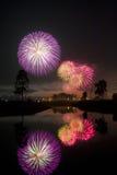 Neues Jahr, s-Feuerwerke Stockfoto