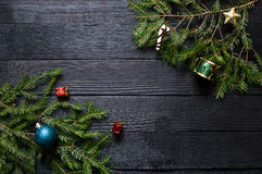 Neues Jahr ` s Grünniederlassungen eines Tannenbaums Lizenzfreie Stockfotos