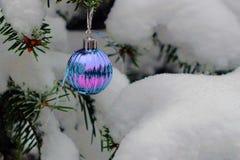 Neues Jahr ` s Spielzeug, das der Ball an die schneebedeckten Tannenzweige hängt Stockbild