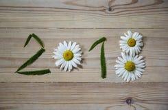 Neues Jahr 2018 von Blumen und von grünem Gras auf hölzernem Hintergrund Stockbild