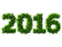 Neues Jahr 2016 von Weihnachtsbaumasten auf Weiß Stockfoto