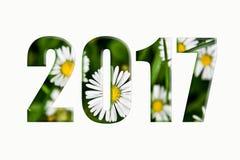 Neues Jahr wünscht 2017 Grün Lizenzfreie Stockfotografie