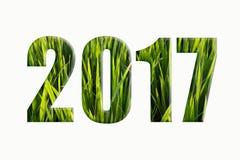 Neues Jahr wünscht 2017 Grün Lizenzfreie Stockfotos